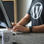 How to provide image credit in WordPress